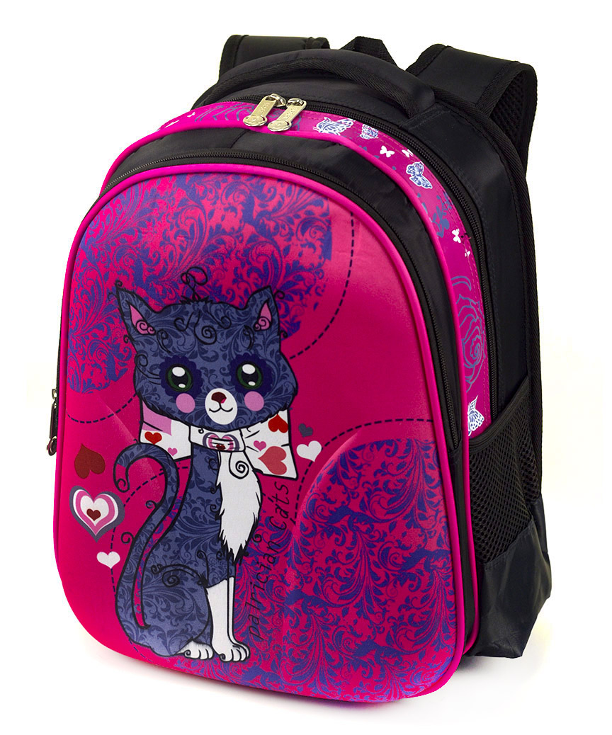 Рюкзак детский с панцирем 5324 котик 39*29*12см